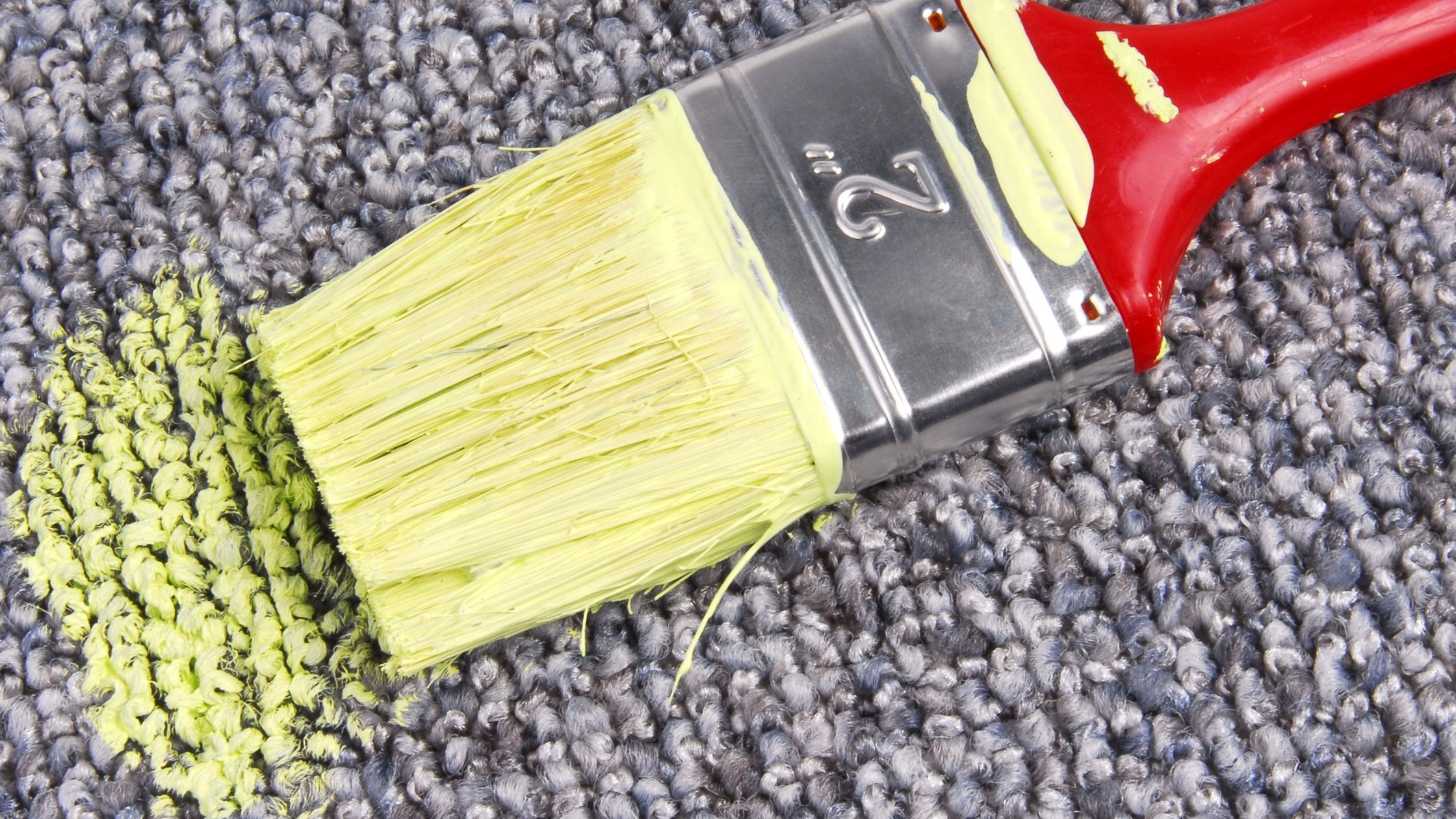 Dealing with dry paint on carpet